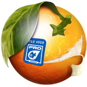 BannerZest Pro icon