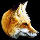 Cunning Fox icon
