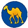 CamlX icon