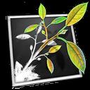 MindNode Pro icon