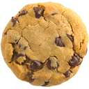 Safari Cookies icon